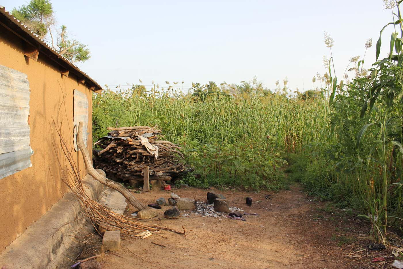 Firewood, millet, and guinea corn are staples